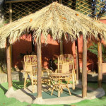 hotel villa franca ischia giardino
