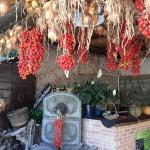 piennulo pomodori ischia