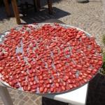 pomodori secchi a ischia