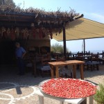 pomodori secchi ischia