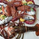 ristorante di pesce ischia