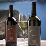 vino ischia ruffano