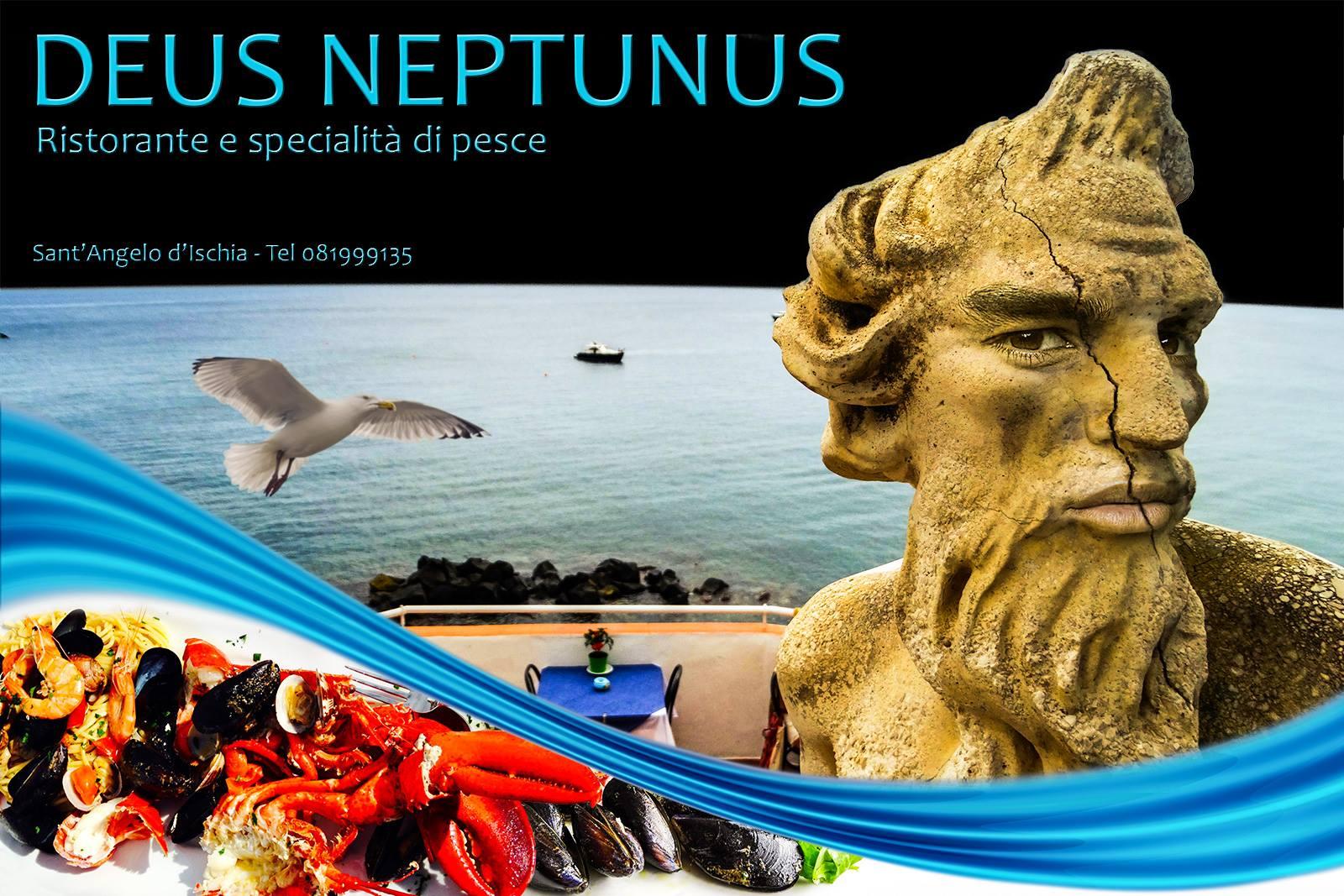 Ristorante Deus Neptunus Sant'Angelo