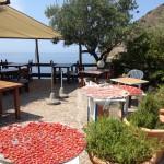 pomodori-secchi-a-ischia-21